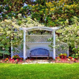 Это не беседка: Пергола в вашем саду