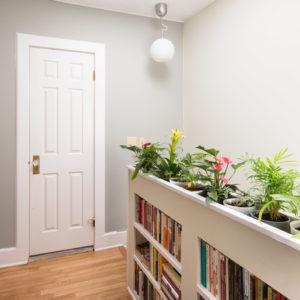 На кухне огород, а в ванной орхидея: Выбираем растения в каждую комнату