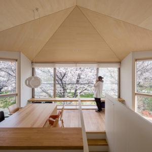 Япония: 4 японских дома с уникальным характером
