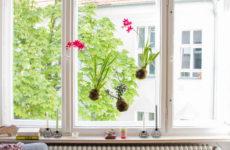 Их нравы: Декор окна на европейский манер — что важно знать?