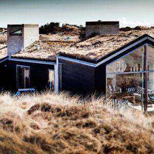 Дания: Дом под Скагеном с травой на крыше