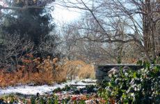 Календарь на ноябрь: Между осенью и зимой