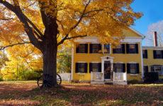 Календарь на октябрь: Садовые работы «золотой осенью»