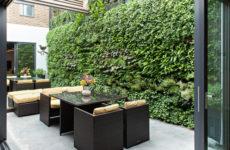 Азбука цветовода: Выбираем растения для вертикального сада