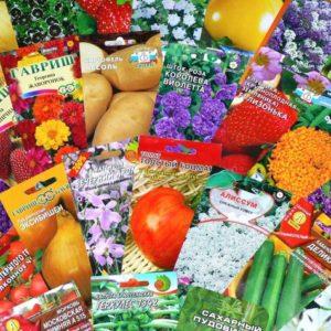 Готовимся к весне: Как выбрать семена для урожая будущего года