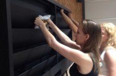 Азбука цветовода: Как выбрать фитомодуль для вертикального сада