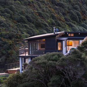 Новая Зеландия: Дом на лесистых холмах Веллингтона