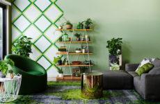 Зона роста: Полезные и потенциально-опасные комнатные растения