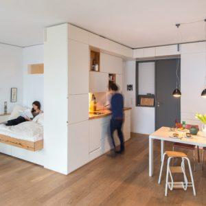Германия: Встроенная мебель из 200-летнего бука на 40 кв.м