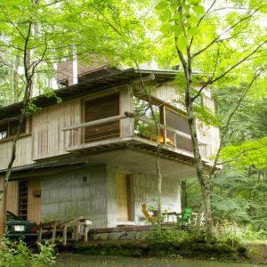 Влияние Фрэнка Ллойда Райта на японскую архитектуру: Часть 2