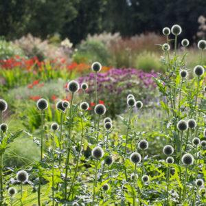 Нидерланды: Якобстуин — очаровательный сад Яапа де Вриса