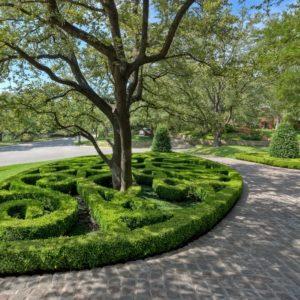 Свой круг: Как оформить приствольные круги деревьев