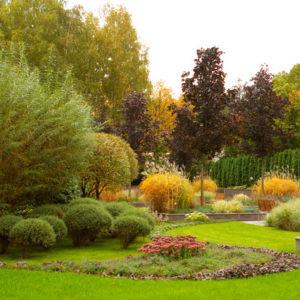 Проект недели: Сад в Заречье с декоративными цветниками из злаков