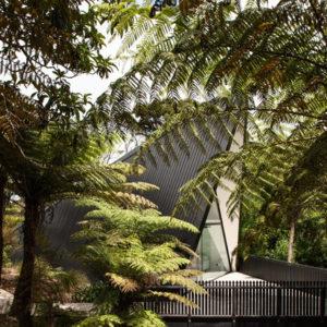 Новая Зеландия: Дом-палатка в зарослях кустарника