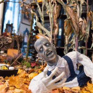 Германия: Шоу ужасов в одной готической квартире перед Хеллоуином