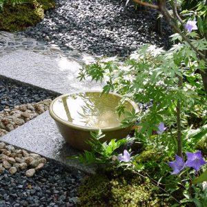 Японский чайный сад: Как создать его самостоятельно