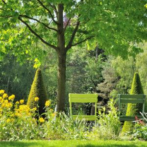 Психология: Почему нам кажется, что у соседей трава зеленее