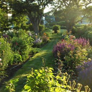 Хороший вопрос: Сколько растений нужно для красивого сада