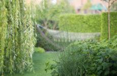 Проект недели: Всесезонный сад на 7 сотках