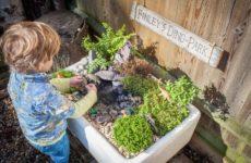 в саду: Мини-парк юрского периода из старой раковины