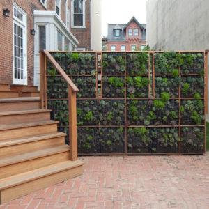 Как сделать вертикальный сад своими руками — в саду и на даче