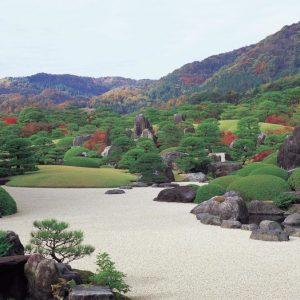 Проект недели: Сад как картина в художественном музее Адачи