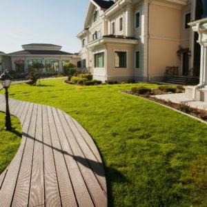 Сад: Методы экспресс-озеленения для нового участка