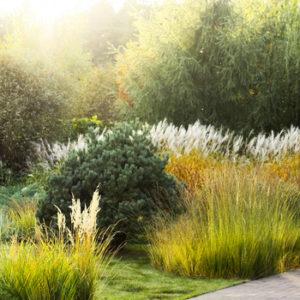 Ваш участок 10 соток? —Забудьте о саде «новой волны»