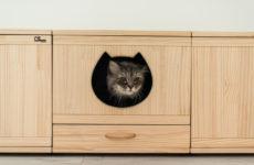 Фотоохота: 21 пример, когда кошки дизайну не помеха