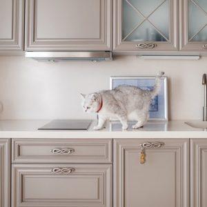 Дизайн-дебаты: Нужна ли дверь на кухню