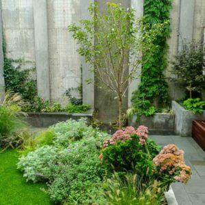 США: Зеленый дворик у многоэтажки в Бруклине