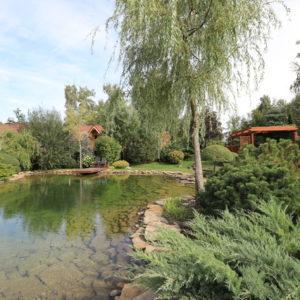 Проект недели: 1 га — сад в Орловской области